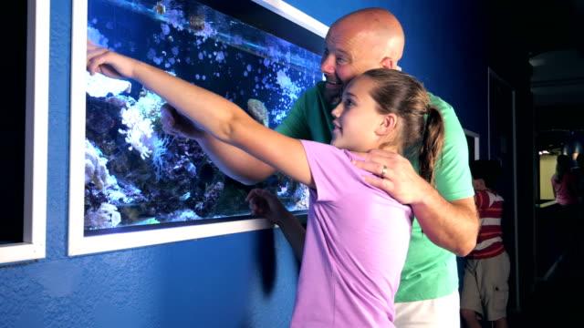 stockvideo's en b-roll-footage met meisje en vader in het aquarium kijken zoutwater aquarium - 12 13 jaar