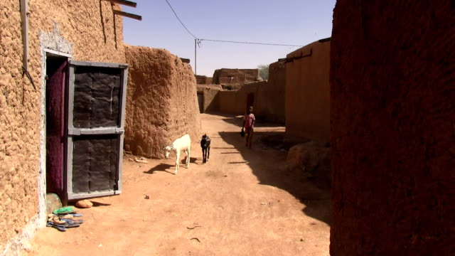 Girl and goat along the sandy street Niger Agadez