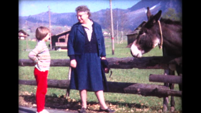 1963 girl and grandma feed donkey - maultier stock-videos und b-roll-filmmaterial