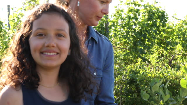 girl and mom pick blueberries, at organic farm - long hair stock videos & royalty-free footage