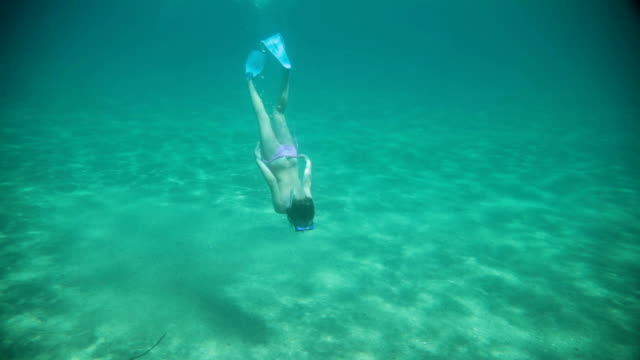 girl and shell underwater in sea - beach holiday stock videos & royalty-free footage