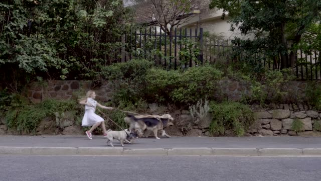 girl being pulled by dogs on sidewalk - weg stock-videos und b-roll-filmmaterial