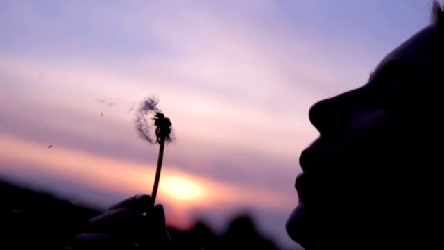 Girl blowing dandelion at sunset.