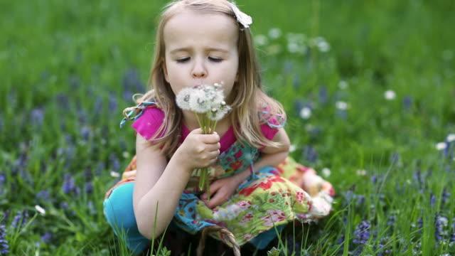 girl (4-5) blowing dandelion seeds - vorschulkind stock-videos und b-roll-filmmaterial