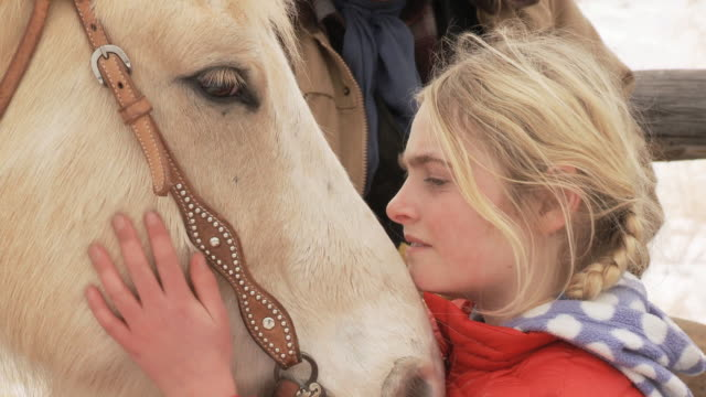 CU Girl chatting to horse and stroking it / Shell, Wyoming, United States