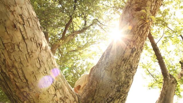 MS LA Girl (6-7) climbing tree, Flagstaff, Arizona, USA