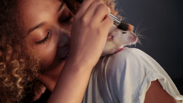 stockvideo's en b-roll-footage met ms girl doing makeup in front of the mirror with her pet rat / copenhagen, sjaelland, denmark - rat