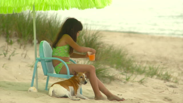 ms td girl (8-9) drinking juice sitting on plastic deck chair on beach with jack russell terrier next to her feet, eastville, virginia, usa - hands behind head stock videos and b-roll footage