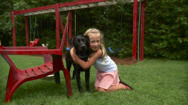 vidéos et rushes de ws zo girl (8-9) embracing black labrador and stroking in playground / stowe, vermont, usa - 8 9 ans