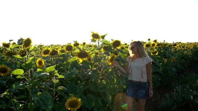 Mädchen genießen im Sonnenblumenfeld