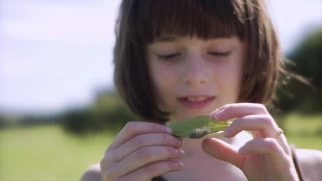 SLO MO CU R/F Girl (8-9) examining caterpillar on leaf / Hampton, New Jersey, USA