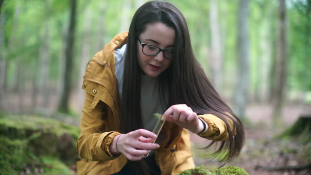 vídeos de stock, filmes e b-roll de girl explorer collecting moss sample for stem research - amostra científica
