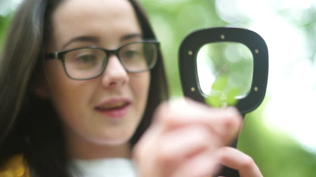 girl explorer viewing a clover leaf through a magnifying glass for stem research - clover leaf shape stock videos and b-roll footage