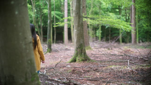 Girl Explorer Wandering through a Mountain Forest for STEM research