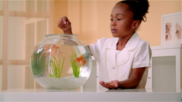 CU, Girl (6-7) feeding goldfishes in fishbowl