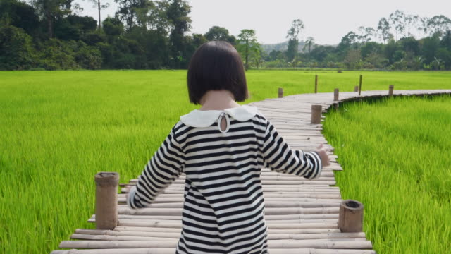 girl feeling enjoy and walking on wooden bridge at the rice field - rice paddy stock videos & royalty-free footage
