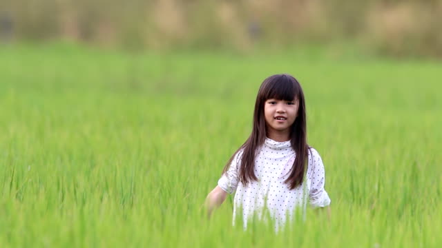 girl feeling enjoy hide-and-seek playing at the rice field.
