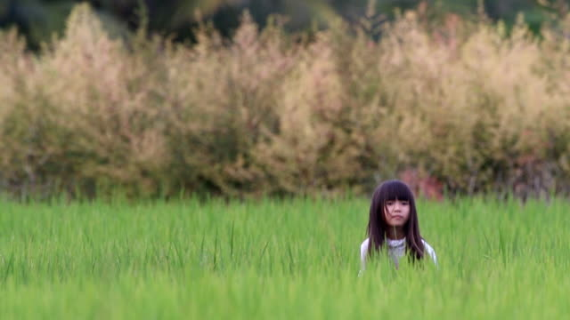 girl feeling enjoy hide-and-seek playing at the rice field. - hide and seek stock videos & royalty-free footage
