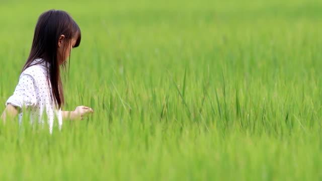 vidéos et rushes de jeune fille sentiment bonheur à déguster à la rizière. - artisanat