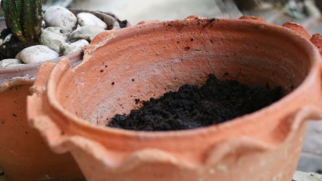 girl hand prepare soil for growing plant - sample holder stock videos & royalty-free footage