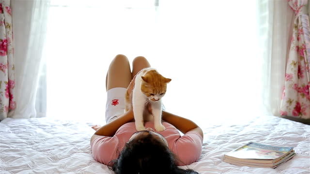 girl holding a cat up above her head and then giving it a hug - little girls giving head stock videos and b-roll footage