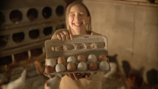 MS Girl (6-7) holding carton of eggs and smiling / Wilmington, Illinois, USA