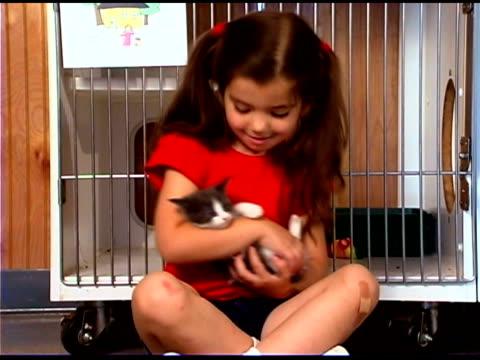 vídeos y material grabado en eventos de stock de girl holding kitten - balancearse