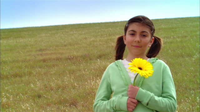 vidéos et rushes de ms girl holding yellow daisy in grassy field on hillside / livermore, california, usa - marguerite