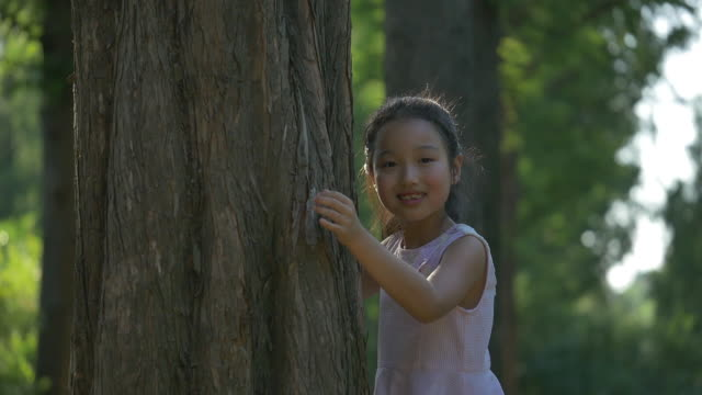 a girl hugging a wooden post in the forest - post stock-videos und b-roll-filmmaterial