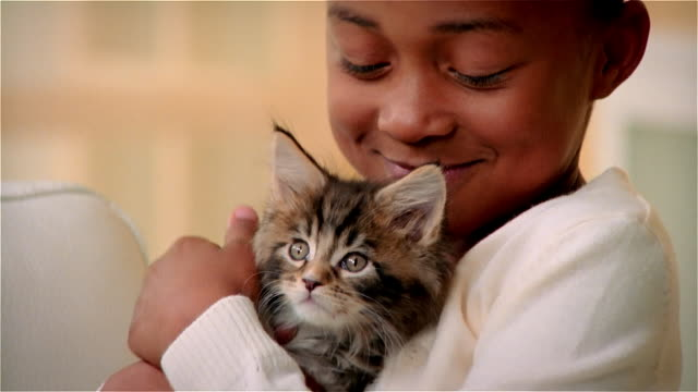 ECU, Girl (6-7) hugging Maine Coon kitten
