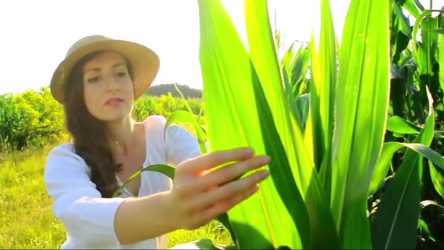 a girl in corn - a girl with a cabbage - only teenage girls stock videos & royalty-free footage