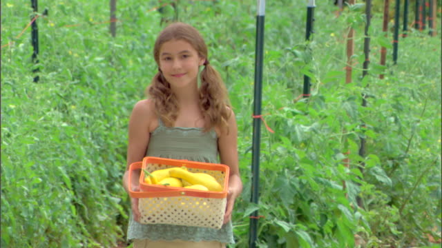 girl in garden with basket of squash - see other clips from this shoot 1425 stock videos and b-roll footage