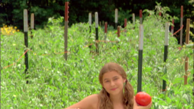 girl in garden with basket of tomatoes - see other clips from this shoot 1425 stock videos and b-roll footage