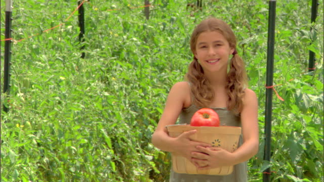 girl in garden with basket of tomatoes - aufblenden stock-videos und b-roll-filmmaterial