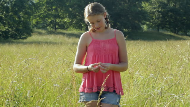 MS Girl (12-13) in meadow / Glen Gardner, New Jersey, USA