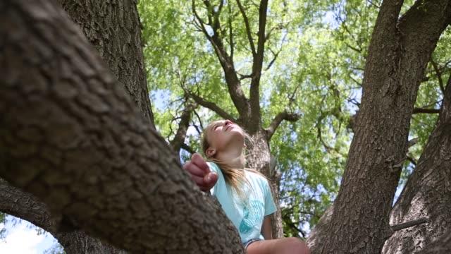 girl in tree - kopf nach hinten stock-videos und b-roll-filmmaterial