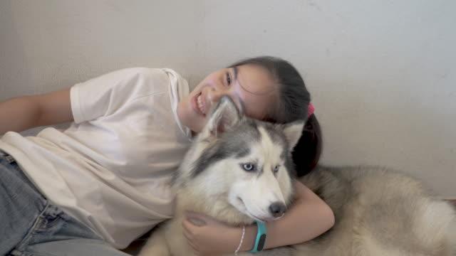 a girl is embracing her siberian husky dog - siberian husky stock videos & royalty-free footage