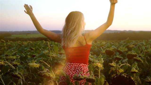 vídeos de stock, filmes e b-roll de garota está desfrutando no campo de girassol ao pôr do sol - de braço levantado