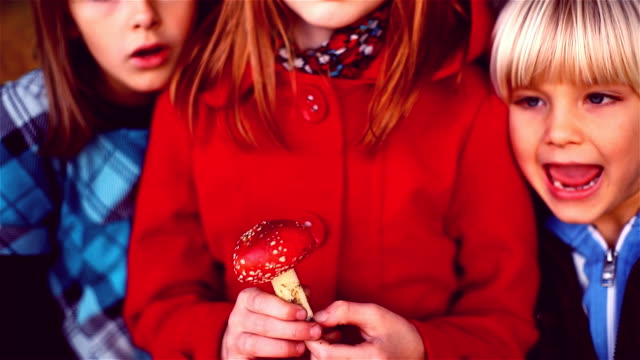 girl is picking a poisonous fly agaric mushroom. - fly agaric stock videos and b-roll footage