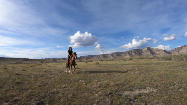 girl is riding a horse through prairie country - recreational horse riding stock videos & royalty-free footage