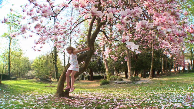 slo mo ws girl (8-9) jumping from magnolia tree, vrhnika, slovenia - vrhnika stock videos and b-roll footage