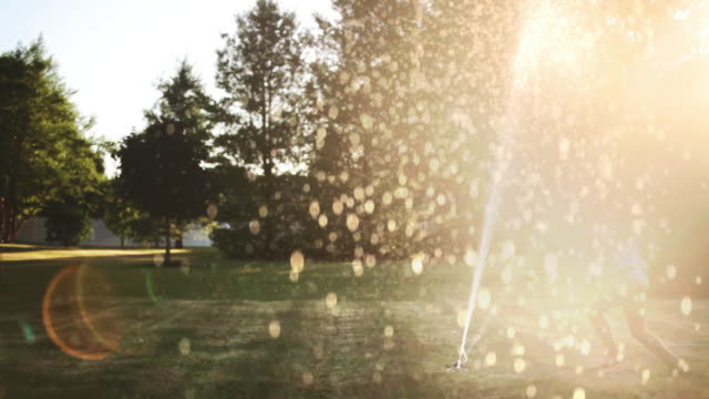vídeos de stock, filmes e b-roll de girl jumping through garden sprinkler with lens flare - aspersor