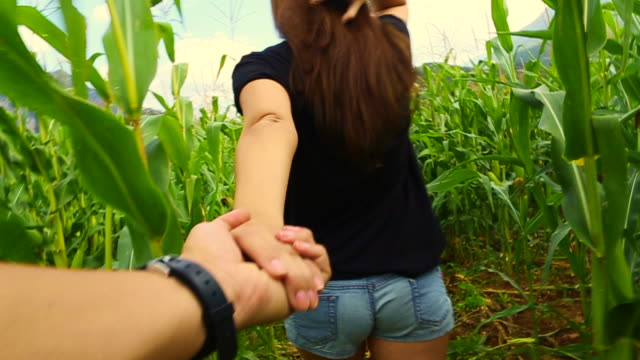 girl leading the way walking with his boyfriend holding hands inside a cornfield in the catalan pyrenees countryside on summer, recorded from personal perspective. follow me. - holding hands stock videos & royalty-free footage