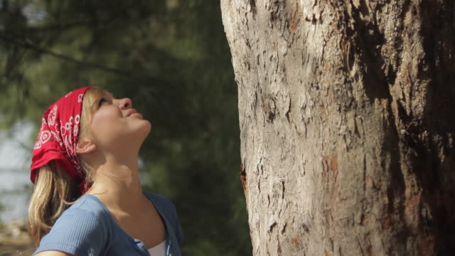 ms td girl (14-15) looking at and hugging tree / cape coral, florida, usa - tree hugging stock videos & royalty-free footage