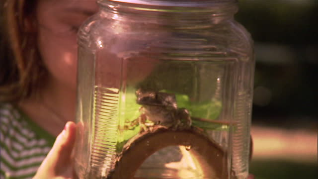 SLO MO CU Girl looking at frog in glass jar / Los Angeles, California, USA