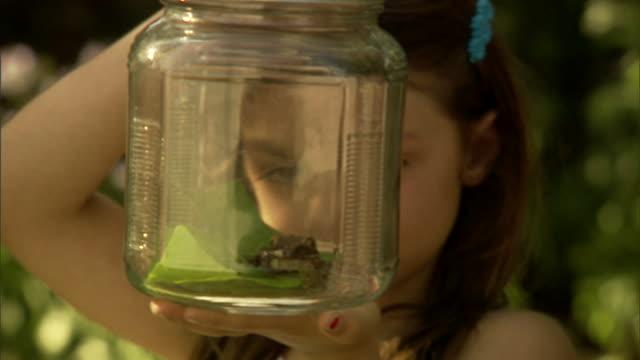 cu, girl (6-7) looking at frog in jar - nur mädchen stock-videos und b-roll-filmmaterial