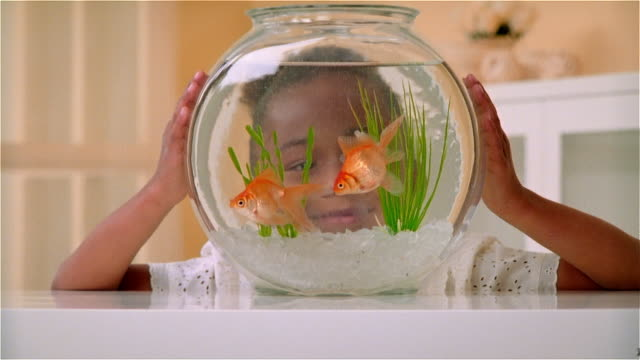 CU, ZO, Girl (6-7) looking at goldfishes in fishbowl