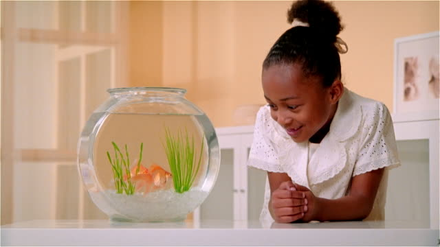 CU, Girl (6-7) looking at goldfishes in fishbowl