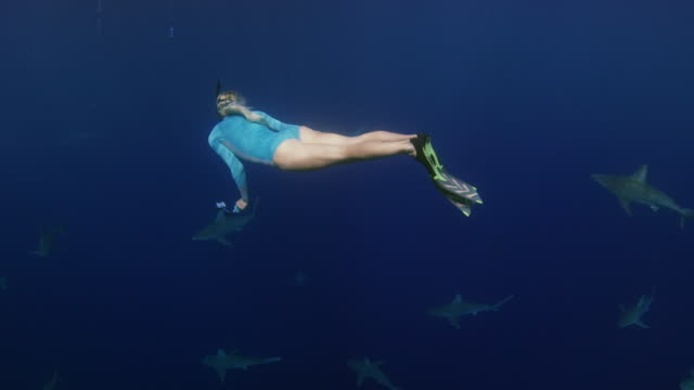 A girl looking back towards camera before swimming into a school of sharks