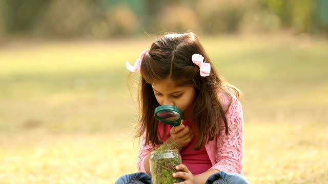 ms girl looking in jar with magnifying glass in garden / delhi, india - tre quarti video stock e b–roll